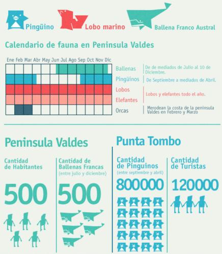 Temporada de Fauna en Patagonia